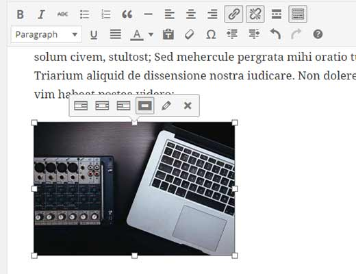 inline-image-editing-toolbar